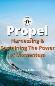 Harnessing & Sustaining The Power of Momentum